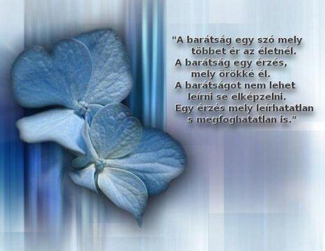 idézetek a barátságról csalódásról A legjobb és a legszebb versek!